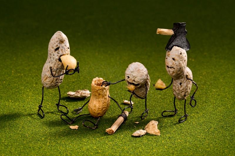 뇌를 먹는 땅콩 좀비 - 사비나미술관 제공